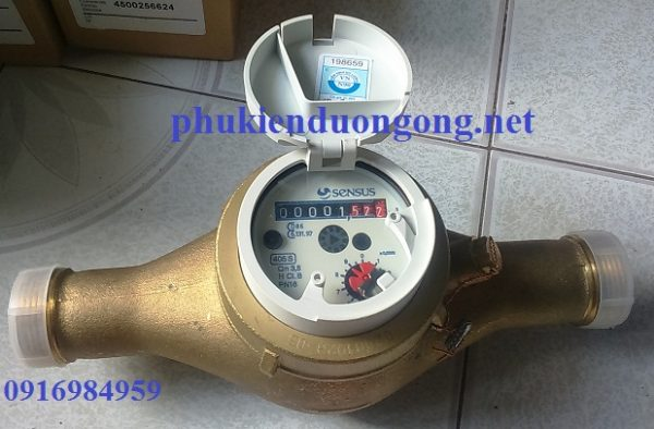 Đồng Hồ Nước Sensus lắp ren DN 20