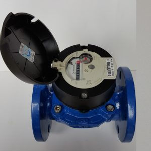 Đồng hồ Itron hiệu Woltex DN80